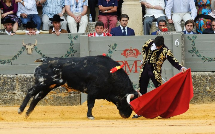 Fran Rivera in the famous Corrida Goyesca