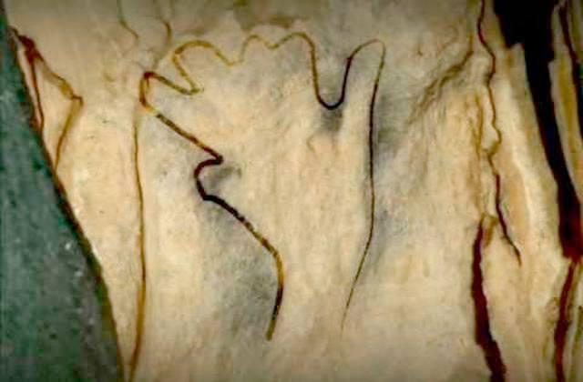 Cuevas de Ardales