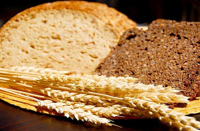 cereales-pan-y-grano