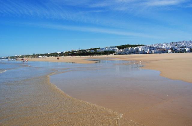 Limpieza Playa de la Fontanilla Conil