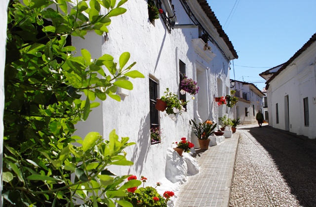 Sports and nature Don't miss these 10 routes to a healthy lifestyle available in Huelva: Cañaveral de León