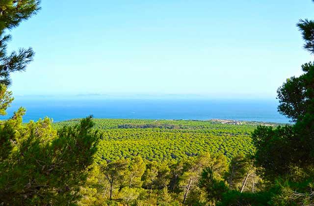 Parques Naturales de Andalucía - Parque Natural del Estrecho