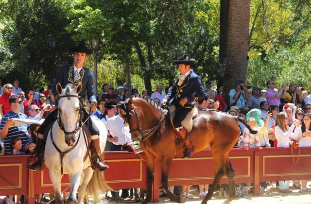 ronda romantica caballos