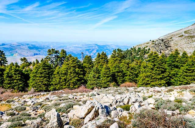Natural Parks of Andalucia - Sierra de las Nieves
