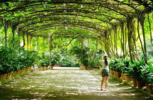 Los 10 mejores y m s originales jardines de andaluc a for Jardin botanique de conception