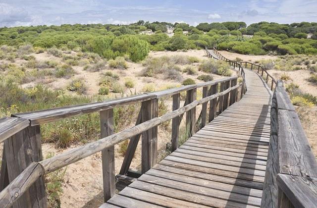 Dunas Odiel, Huelva
