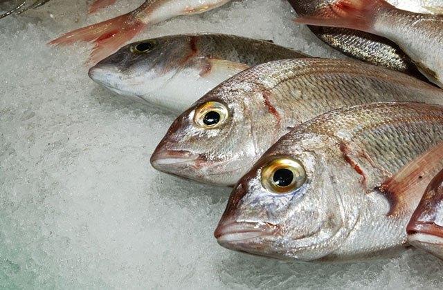 los mejores pescados y mariscos de Andalucía - lonja