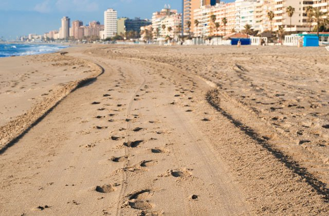 Dog beaches in Malaga - Playa El Ejido Fuengirola