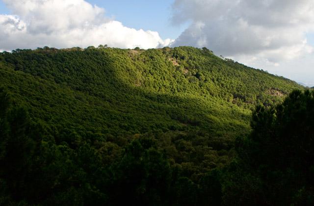 Randonnée en Andalousie - Pico Porretón. Fotografía de Javier Martos Martín