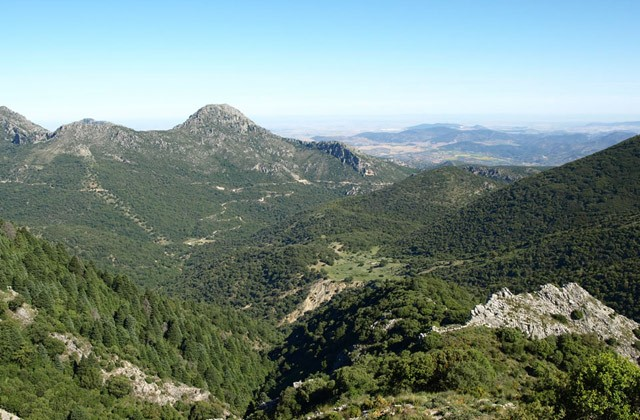 Hiking in Cádiz - Pinsapar de Grazalema