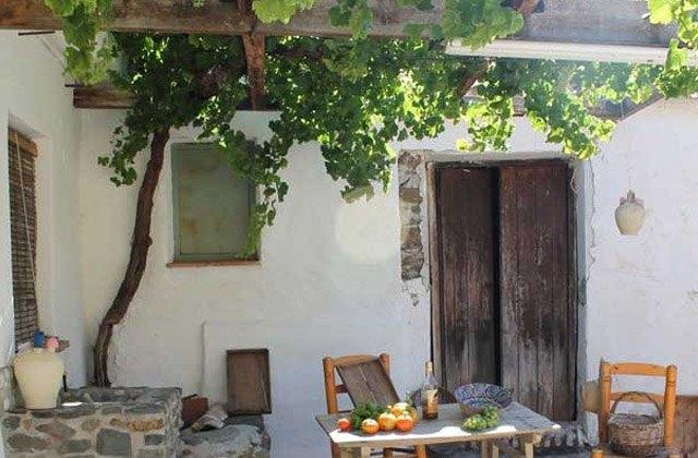 7 'Supernahrungsmittel' die Sie in Ihre Ernährung aufnehmen sollten: Día de la Pasa, El Borge