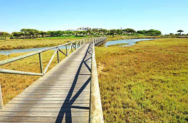 Marisma del Piedras Huelva