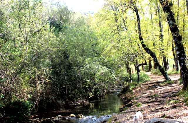 Ruta de senderismo en el río Majaceite