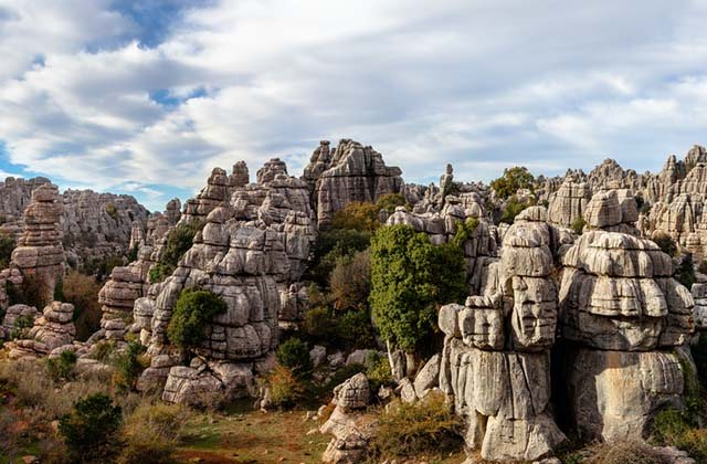 Andalucian forests and woods - Rock forest in El Torcal de Antequera
