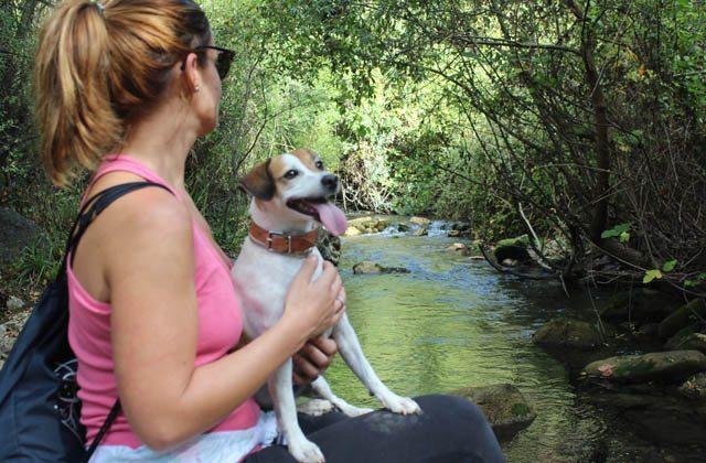 Ruta perfecta para mascotas