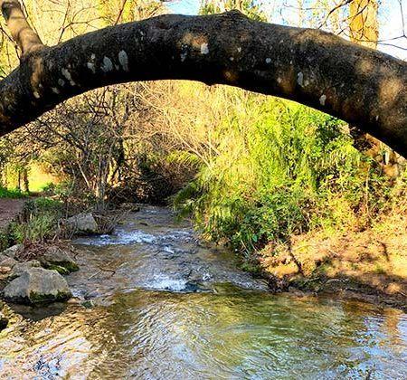 río Majaceite Grazalema