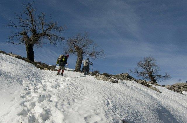 10 Routen, um den Schnee in Andalusien zu genießen - Caucón