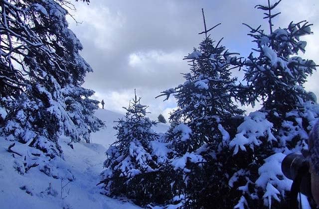10 rutas donde disfrutar la nieve en Andalucía - Puerto de las Camaretas