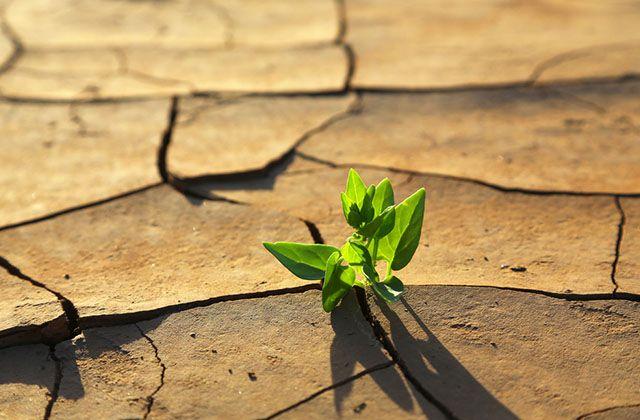 huella de carbono - Se debe reducir el impacto del cambio climático