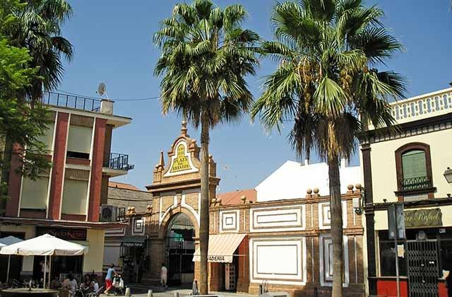 Andalucía de cine - Localidad de Palma del Río, donde se rodó El reino de los Cielos