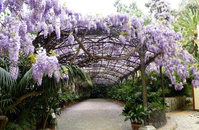 10 places in Andalucia where it should always be spring: visit them: Jardín botánico La Concepción