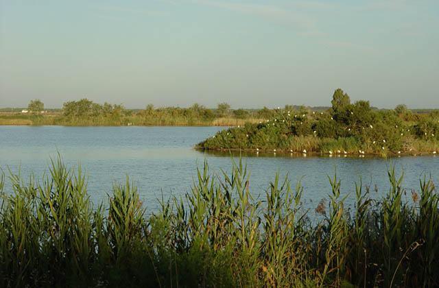 Laguna del Tarelo. Fotografía: asociacion-andalus.org