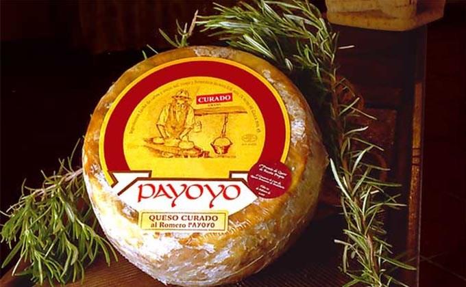 Ruta de los quesos de Cadiz - queso de cabra payoya
