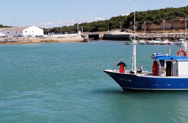 que hacer en Conil de la Frontera - Puerto Pesquero Conil