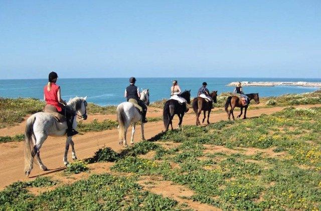 que hacer en Conil de la Frontera - Rutas a caballo. Fotografía de www.elcelemindeconil.com