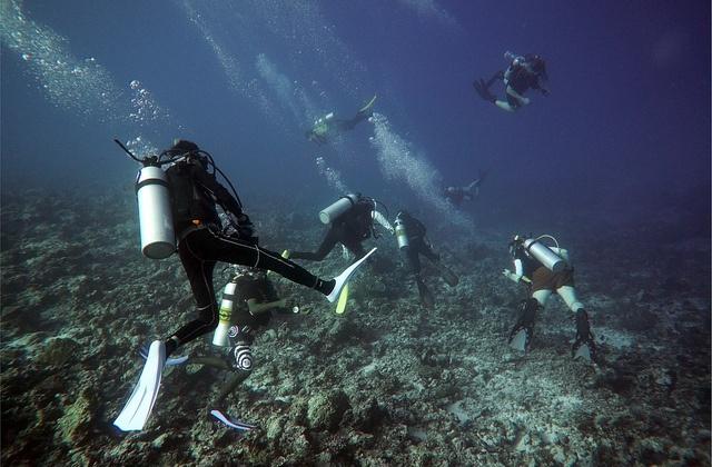 The best places to scuba dive, dive or snorkelling in Andalucia: Cádiz. Fotografía de es.topsportholidays.com