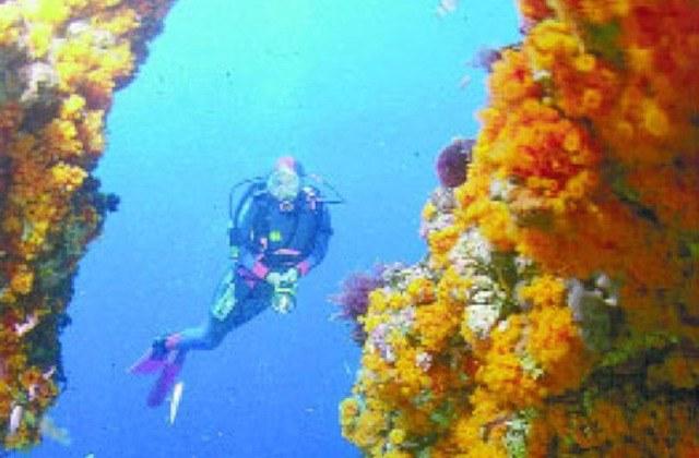 The best places to scuba dive, dive or snorkelling in Andalucia: El Rompido. Fotografía de www.nauticalnewstoday.com