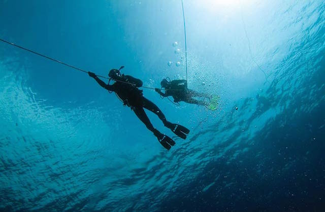 20 things to see and go to in Marbella - Diving in Marbella