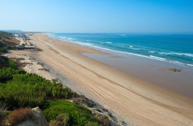 Strände zum Surfen Andalusien - Conil de la Frontera: Playa de la Fontanilla