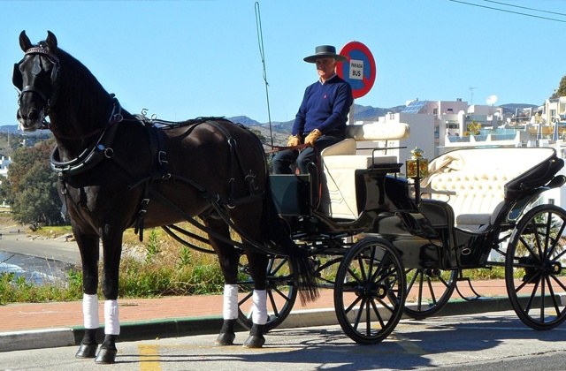 que hacer en Estepona - Paseo en coche de caballos