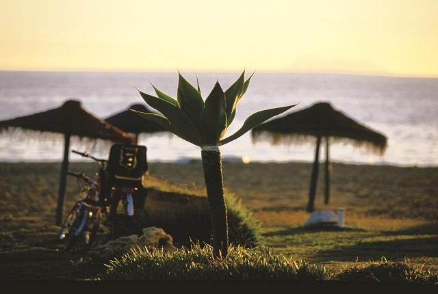 surfing in Andalucia - Playa Casasola - Atalaya, Estepona. Fotografía Patronato Turismo Costa del Sol