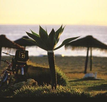 Playa Casasola - Atalaya, Estepona. Fotografía Patronato Turismo Costa del Sol