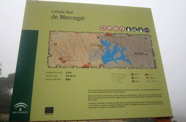 Genießen Sie die besten Wanderstrecken in Alcalá de los Gazules, Cádiz: Cañada Real Mercegal