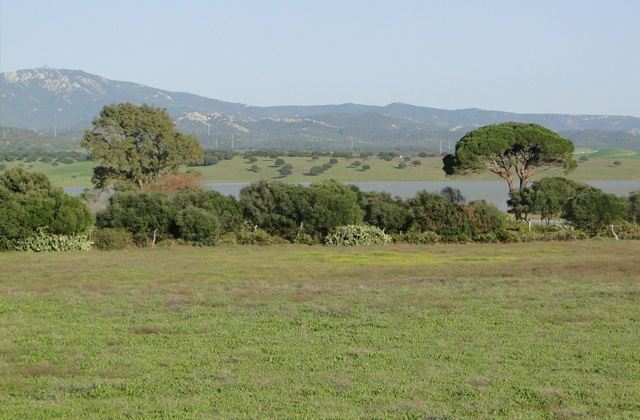 Cañada Real los Ratones
