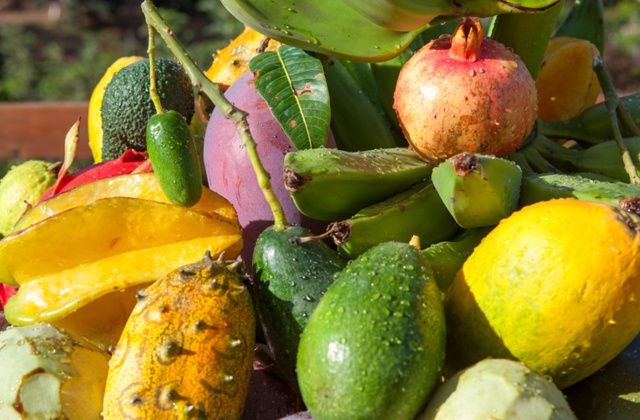 Things to do in Nerja - try Axarquía tropical fruit