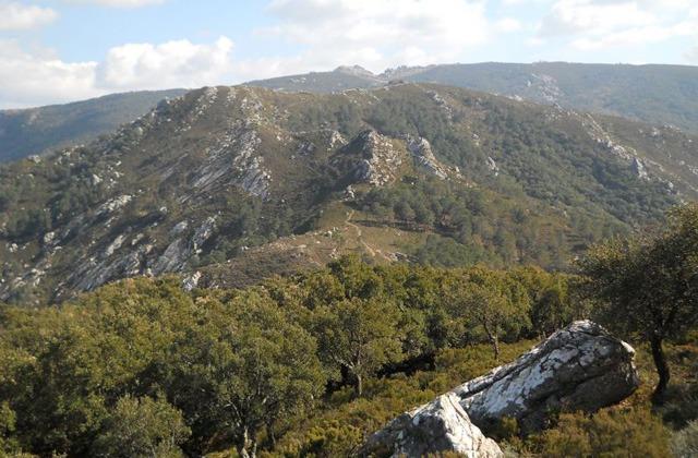 Genießen Sie die besten Wanderstrecken in Alcalá de los Gazules, Cádiz: Ruta del monte Picacho