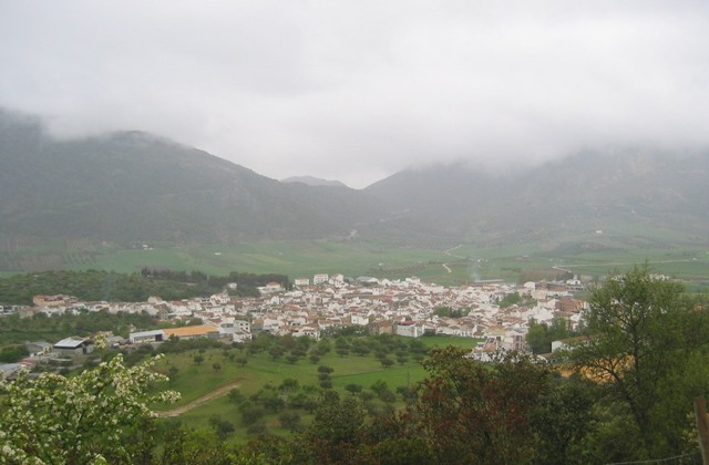 7 oil sites in Axarquia. Enjoy the oil route and the mountains: Alfarnate