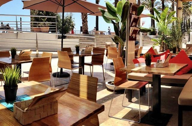 Eat healthy and enjoy ten of the best vegetarian restaurants in the Costa del Sol: Restaurante Terra Sana