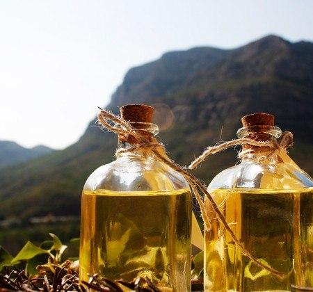 Ruta del aceite y los montes