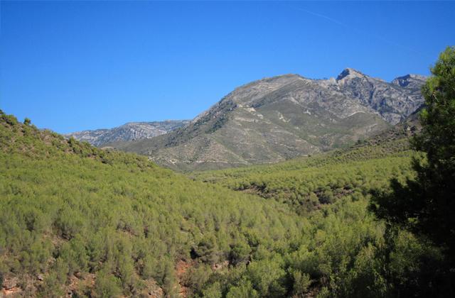 Vista de la cara sur de Sierra Almijara