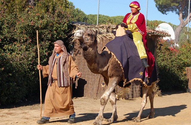 The Reyes Magos or Three Wise Men are on their way: El Rey Baltasar en dromedario