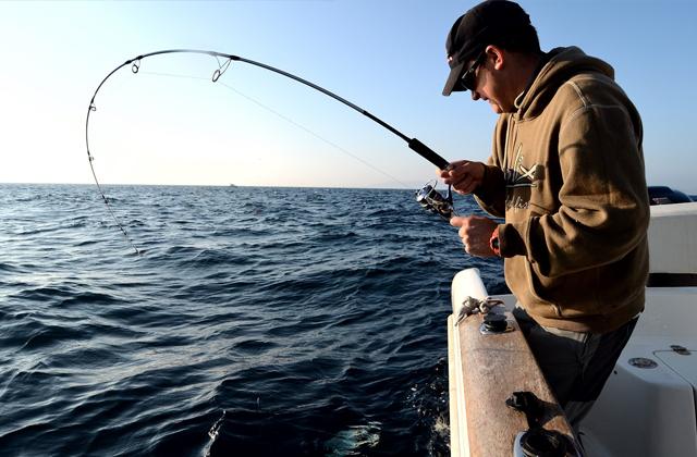 10 activities for all the family in Costa de la Luz: Pesca deportiva