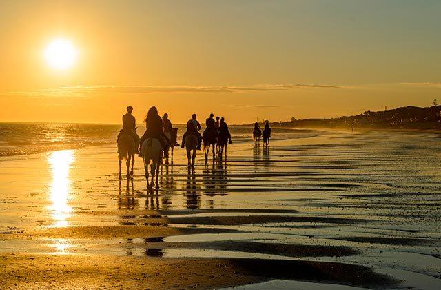 Activités pour la famille sur la Costa de la Luz - Rutas a caballo Huelva