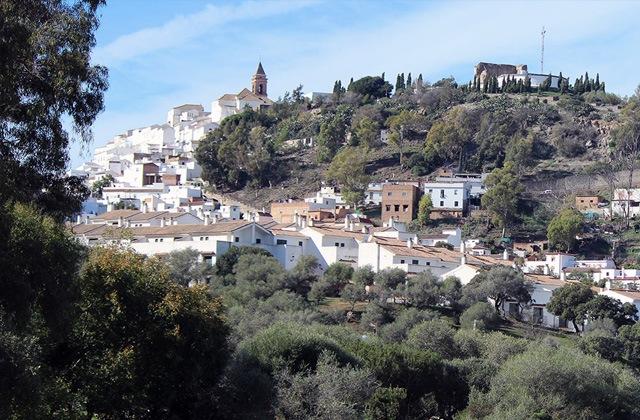Ruta de los quesos de Cadiz - Alcalá de los Gazules