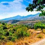 Alpujarra Granadina