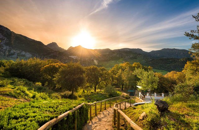 Ronda Romántica - Sierra de Grazalema